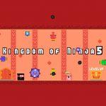 Kingdom of Ninja 5